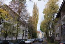 A street in Sarajevo