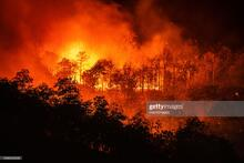 Forest Fire Thailand